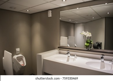 Modern faucets with washbasin in public restroom, interior of toilet.