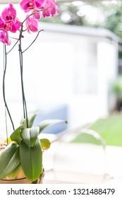A modern flower vase