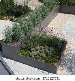 Modern garden architecture with grass and herbs