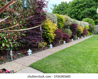 Modern garden design using acer trees and Japanese pagoda style ornaments.