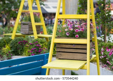 modern garden- ladder as a stand for flowers
