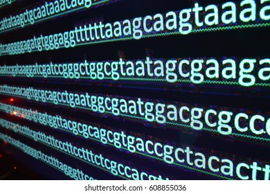 Modern genome sequencing. The sequence of nucleotide bases in DNA, alphabetic characters.