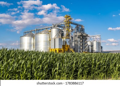 Modern Granary elevator. Silver silos on agro-processing and manufacturing plant for processing drying cleaning and storage of agricultural products, flour, cereals and grain.