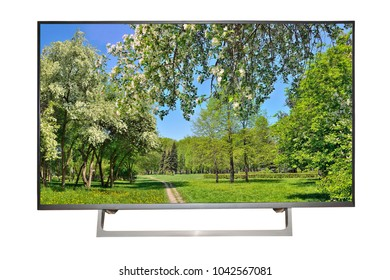 Modern high-definition TV or monitor of computer isolated on a white background with beautiful view of spring landscape with blossoming cherry and apple trees on the screen - mockup