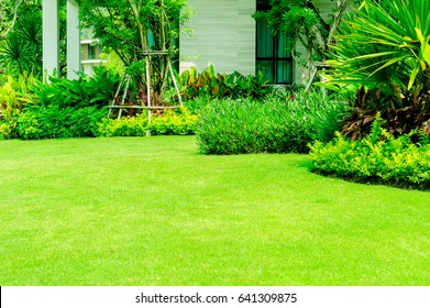 Modern house with beautiful landscaped front yard, Lawn and garden.