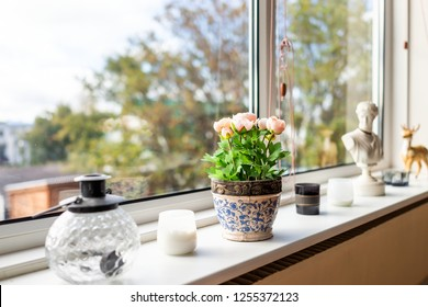 Modern house living room kitchen window decorations decor with candles, glass teapot, flowerpot flowers and sunlight, green plant staging home interior