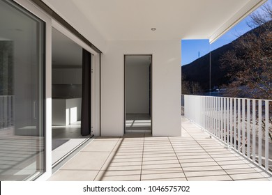Modern house terrace with railing. Large plant outside the balcony, blue sky. Frontal view