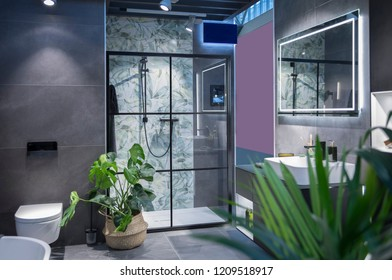 modern interior of bath room with green plant decoration