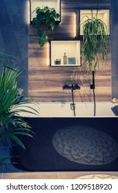 modern interior of bath room with plants