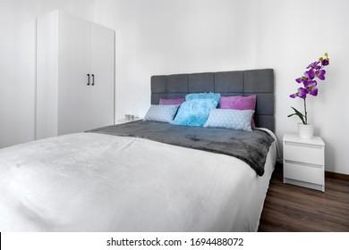 Modern Interior bedroom design with gray cozy bed.