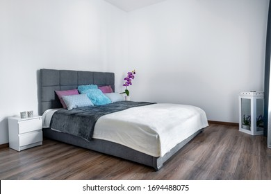 Modern Interior bedroom design with gray cozy bed.