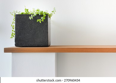 Modern Interior: Dark Stone Pot With Green Plant On Wooden Shelf