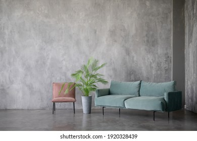 Modern interior design of the living room with a soft sofa and a green flower on the background of a concrete wall. Minimalist interior design.