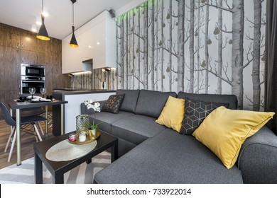 Modern interior design small apartment with open space kitchen