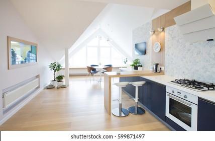 modern interior  kitchen in large apartment in mansard