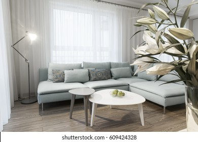Modern interior of a small private apartment, sitting room: sofa and two coffee tables