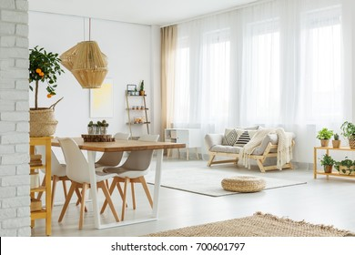 Modern interior with white brick wall wooden elements and fruit tree