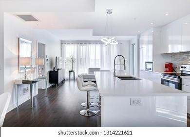 Modern Kitchen and Condominium Interior