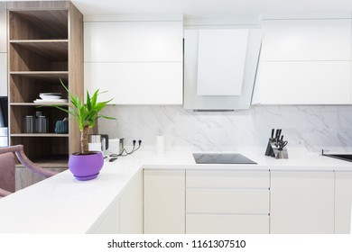 Modern kitchen design interior