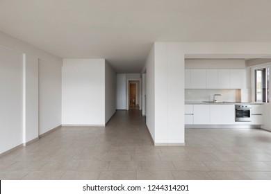 Modern kitchen in empty apartment. Nobody inside