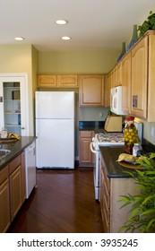 Modern kitchen with oak cabinets