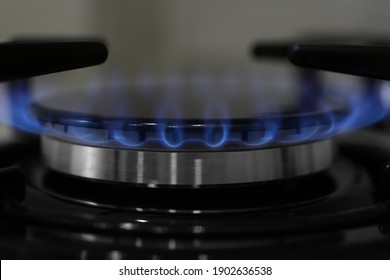 Modern kitchen stove with burning gas, closeup