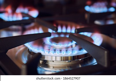Modern kitchen stove cook with blue flames burning, gas burner, closeup, shallow depth of sharpness