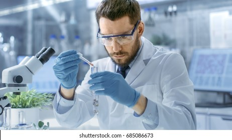 In a Modern Laboratory Biologist Conducts Experiments by Synthesising Compounds with use of Dropper and Plant in a Test Tube.
