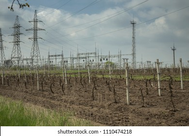 Modern landscape in Moldova. Electrical Power Substation in the background and the vineyard in the foreground.