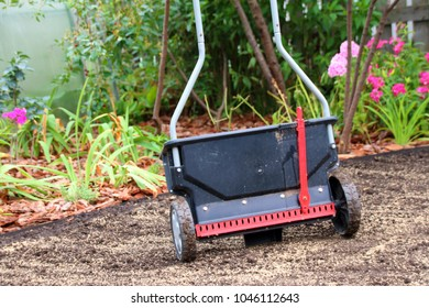 Modern lawn spreader on the strewed with lawn seeds soil in the summer garden