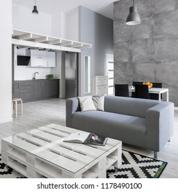 Modern living room with gray sofa, diy pallet table and pattern carpet
