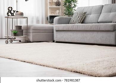 Modern living room interior with cozy sofa and soft carpet