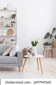 Modern Living Room Interior Design With Comfortable Sofa, Coffee Table And Plants, Cropped Image With Copy Space