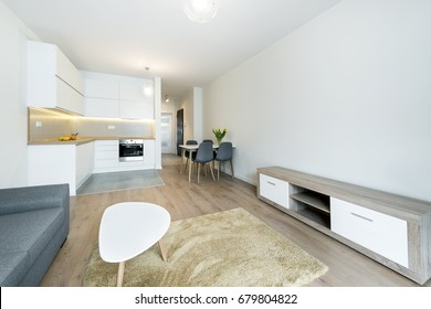 Modern living room and kitchen in small apartment