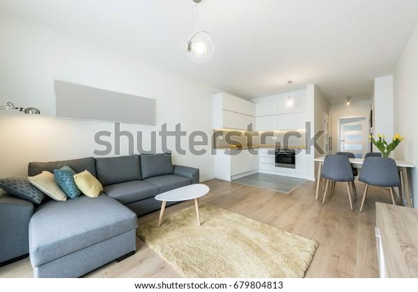 Modernes Wohnzimmer und Küche in kleinen Appartements
