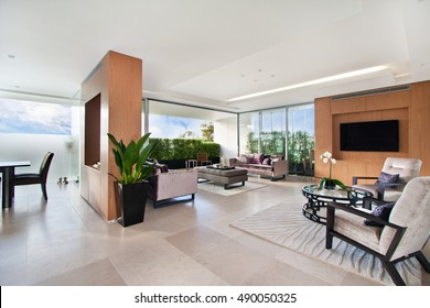 Modern living room.  spacious great room with sofas.