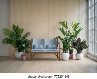Pleasant Sofa Jungle Stock Photos Images Photography Shutterstock Bralicious Painted Fabric Chair Ideas Braliciousco