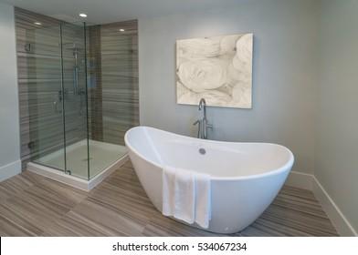 Modern luxury bathroom with bathtub. Interior design.