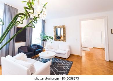 Modern luxury living room with wood floor