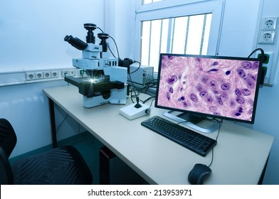 Modern microscope station with tissue section on the screen