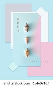 Modern minimal trendy summer theme mood board in material design style with seashells in flat lay surrounded by blue, white and pink rectangular shapes