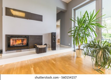 Modern minimalist fireplace in villa interior with potted plants