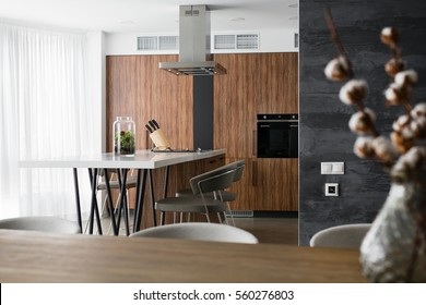 Modern minimalistic kitchen interior