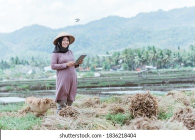 Modern Muslim female farmers use tablets after harvesting rice in the fields