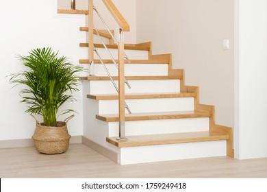 Moderne natürliche Aschenbaum-Holztreppen im Neubau
