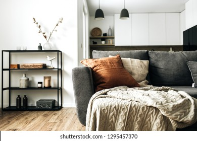 Modern Nordic Scandinavian interior design. Bright open space living room with comfortable couch, knitted plaid, ginger pillow, kitchen, wooden floor. Elegant apartment for rent concept.