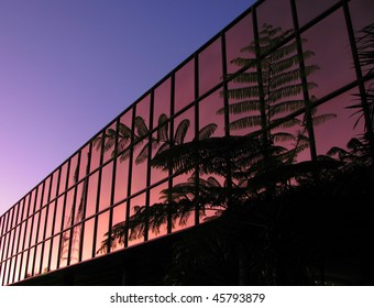 Modern office block with palm silhouette in early morning sky