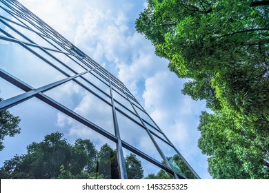 modern office building with green leaves