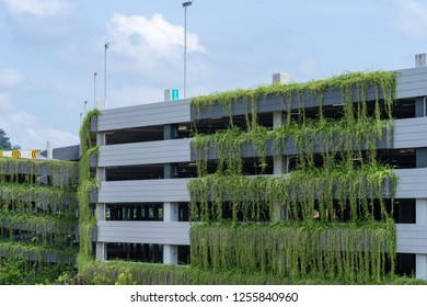 Modern parking garage building covered with plant, exterior decoration.