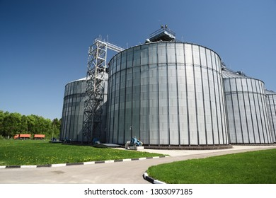 Modern plant for storage and processing crops. Industrial landscape. Big granaries in sunny summer day copyspace